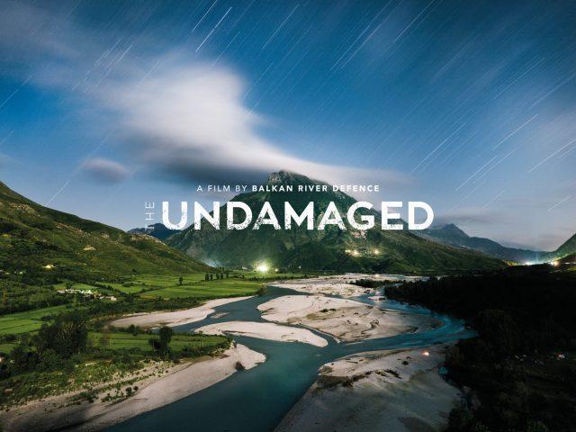 The Undamaged Trailer