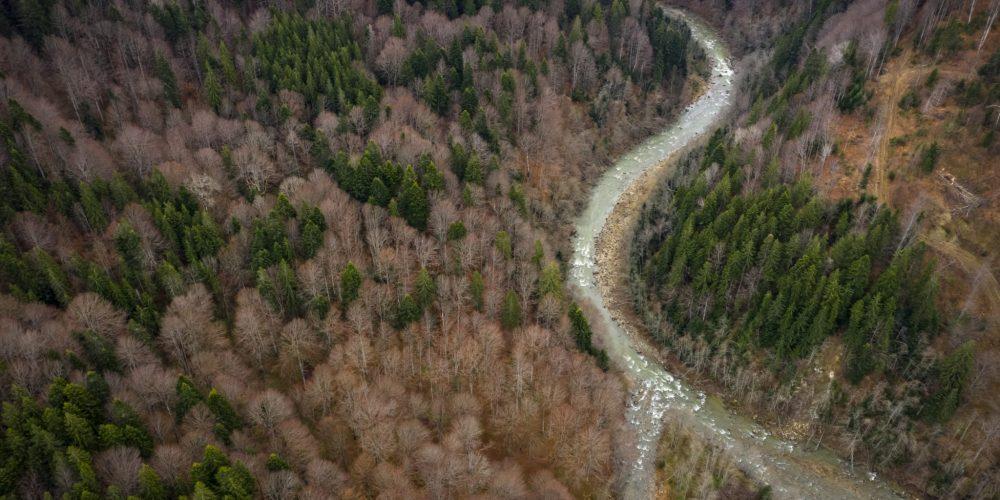 THE FUTURE LOOKS BRIGHT FOR ROMANIA'S BASCA MARE RIVER